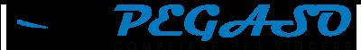 Pegaso Ingegneria Logo
